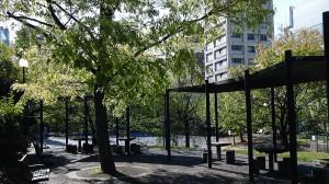 坂本町公園の朝